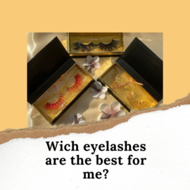 Wich eyelashes are the best for me?