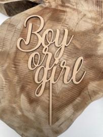 Taarttopper Boy or Girl B
