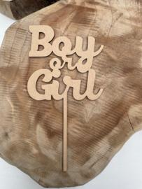 Taarttopper Boy or Girl C