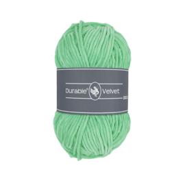 Durable Velvet - 2137 Mint