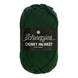 Scheepjes Chunky Monkey - 1009 Pine