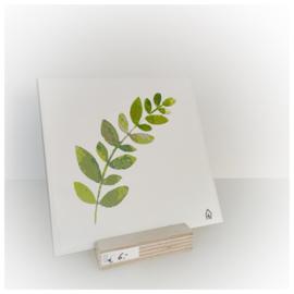 Tegeltje eucalyptus tak op houder