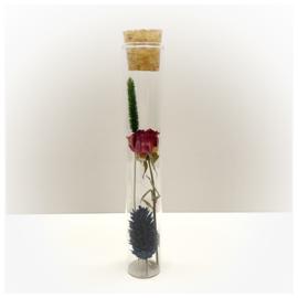 Tube XS met droogbloemen 'kleurrijk'