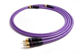 Purple Rain 2RCA > 2RCA MD2R 0,5m