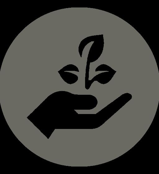 Verzorgingsproducten van natuurlijke oorsprong | Beleving.eu