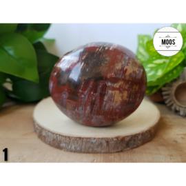 Versteend hout - Handsteen XL5