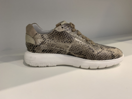 Sneaker taupe Haley 3-D