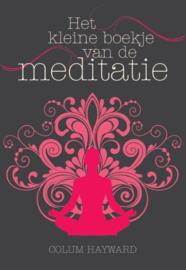 Colum Hayward - Het kleine boekje van de meditatie