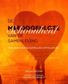 Jan Jacob Stam - De meedogenloze schoonheid van de samenleving