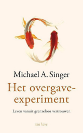 Michael A. Singer - Het overgave-experiment