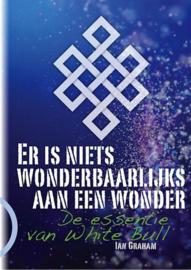 Ian Graham -  Er is niets wonderbaarlijks aan een wonder