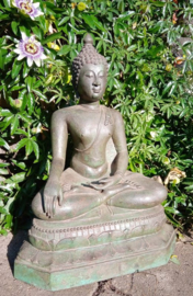 Boeddhabeeld in Bhumisparsha houding
