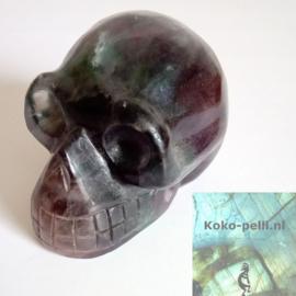 Fluoriet schedel 309 gram