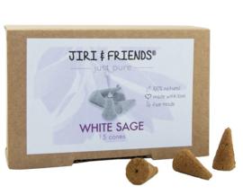White sage cones
