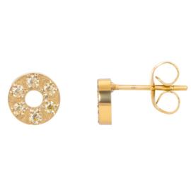 iXXXi oorbellen / oorstekers Circle stone 6mm goudkleurig