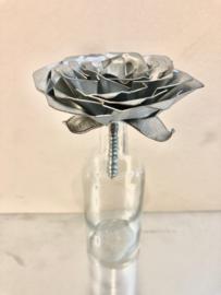 Roos Zink met steel