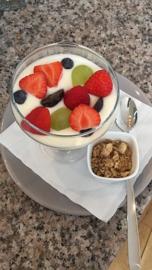Yoghurt met vers fruit en granola