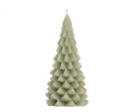 Kerstboom kaars; Eucalyptus (middel)