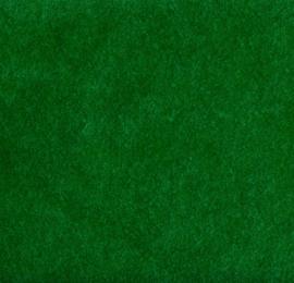 S0009 - Green