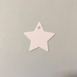 Cadeaulabel ster wit (5st)