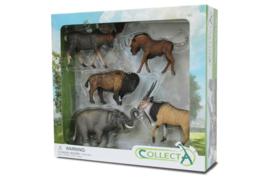 Wilde dieren kadoset CollectA 89674