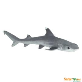Whitetip Reef Shark   S100100