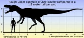 Neovenator  CollectA 88917
