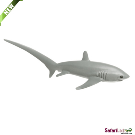 Thresher Shark   S200229