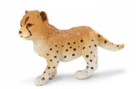 Cheetah   jong S272029
