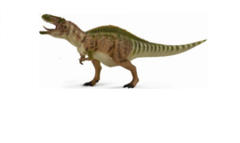 Collecta Deluxe Prehistoric life Collection   1:40