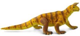 Shringasaurus      S100357