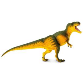 Daspletosaurus Safari 100572