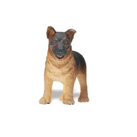 Duitse herder  puppy  S235629