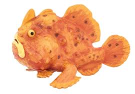 Frogfish Safari Ltd
