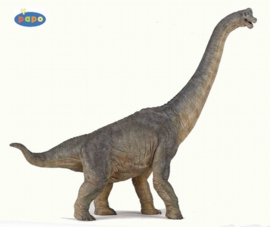 Brachiosaurus Papo 55030