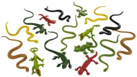 Reptielen   S695704