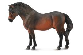 Dartmoor pony  hengst  M  Collecta 88604