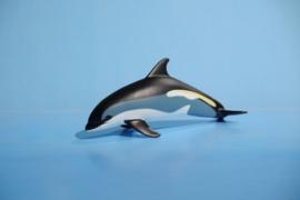 Dolfijn   S100366