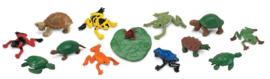Kikkers en schildpadden  S694804