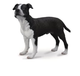 American Staffordshire Terrier    CollectA 88610 -