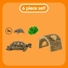 Tortoise & Hatchlings with Home Schleich 42506