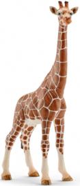 Giraffe vrouwtje Schleich 14750