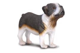 Bulldog  CollectA 88179