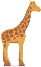 Giraffe (TLT)