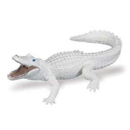 Krokodil  witte