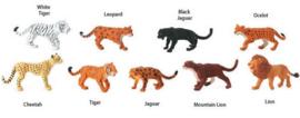 Big Cats    S694604
