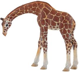 Giraffe  Bullyland  63668