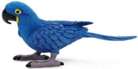 Hyacinth Ara Safari Ltd  S264229
