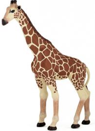Giraffe   Papo 50096