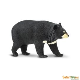 Asian Black Bear  S100044